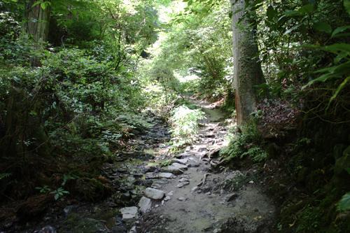 沢は大山橋以降、左側を流れる。