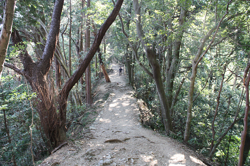 登山コース