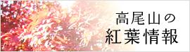 side_banner_koyo