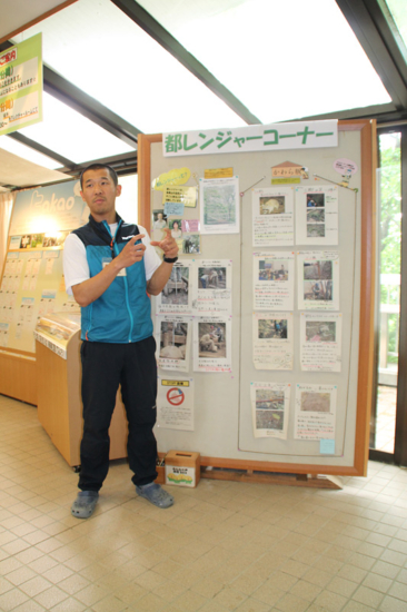 ビジターセンター館内では、様々な展示で高尾山周辺の生物、環境の情報にふれることができます。