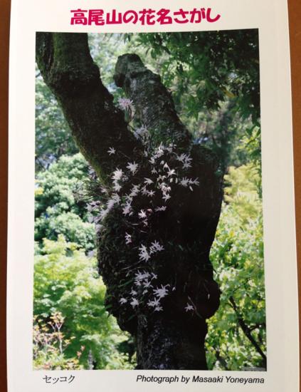 セッコクの写真のポストカード。