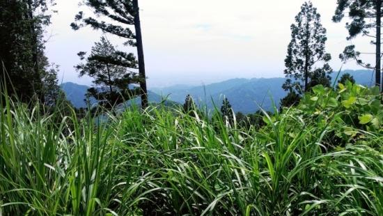 景信山からの遠景