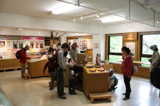 ビジターセンター館内の様子。高尾山の生き物や植物の展示が多数。