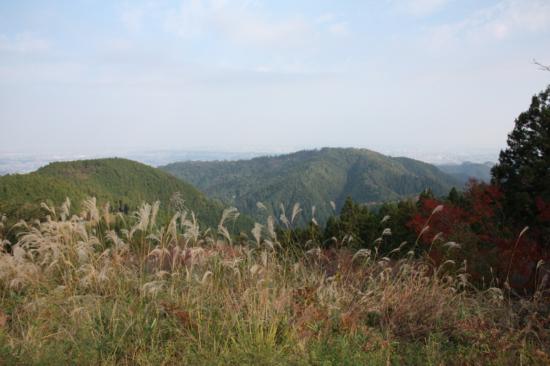 小仏城山の展望台。向こうに見えるのは高尾山。