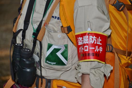 「盗掘防止パトロール中」の腕章