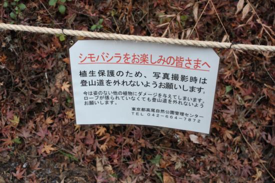 シモバシラの観察場所でも踏み込み禁止のロープが設置されている。