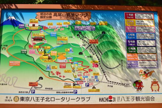 稲荷コースは一番左端のオレンジのコースです! ご存知でした?高尾山は国定公園なんですよ。