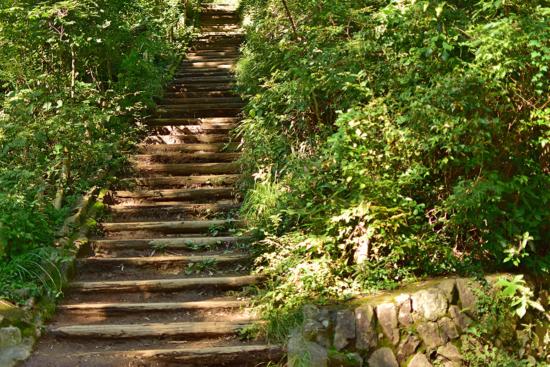 巻き道もあるので、この階段登らなくても山頂にいけますのでご安心ください^^