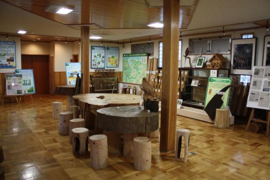 館内では森林関係の展示のほか、木工教室も体験できる。