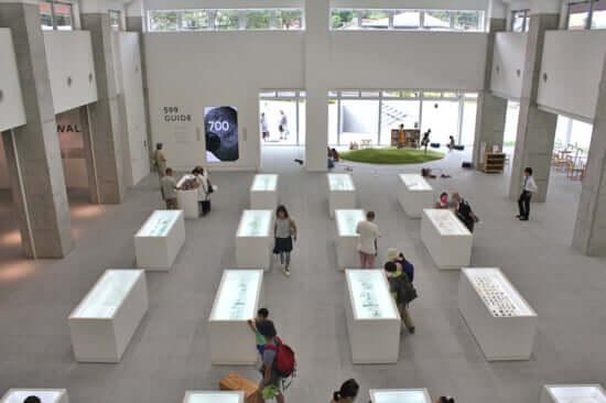 2Fから俯瞰した展示室。
