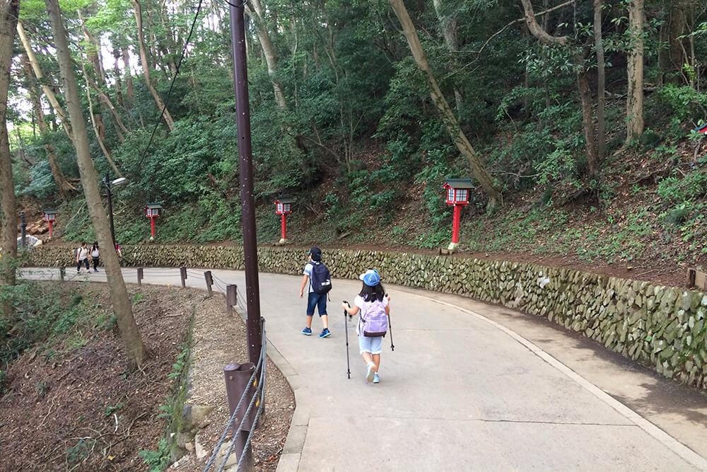 高尾山を歩く小学生